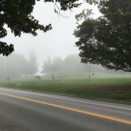mist and fog